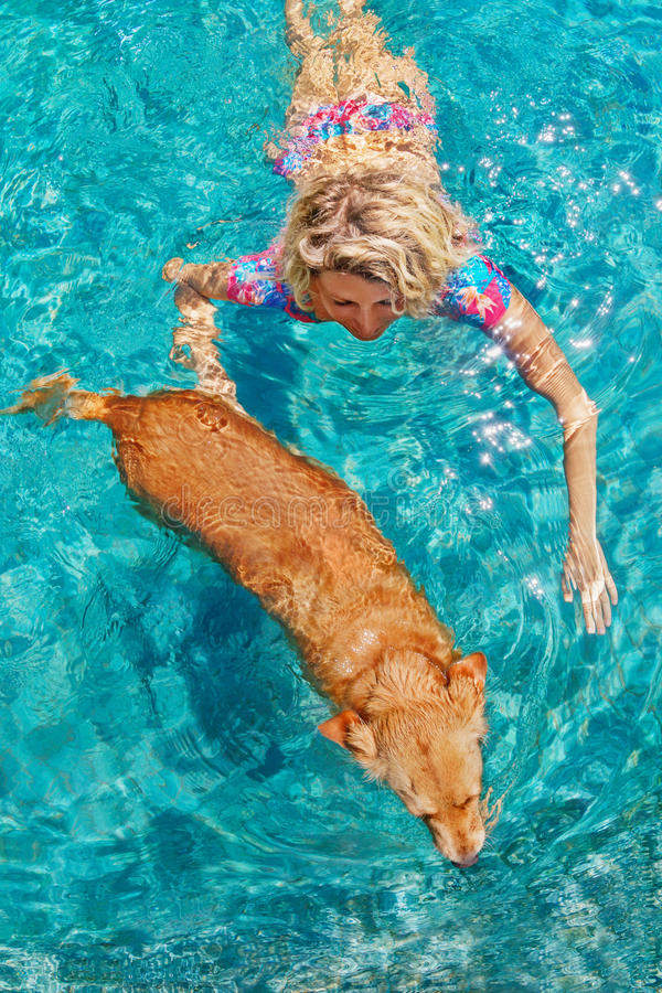 Beautiful woman young woman swim with dog in pool. Funny photo of sunbathing woman playing with dog and training dog puppy in swimming pool with blue water royalty free stock photos