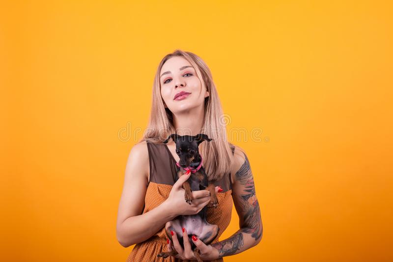 Beautiful women with casual dress and her adorable puppy over ellow background royalty free stock photos