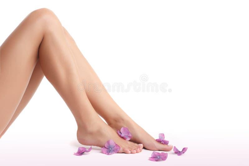 Beautiful women's legs stock photos