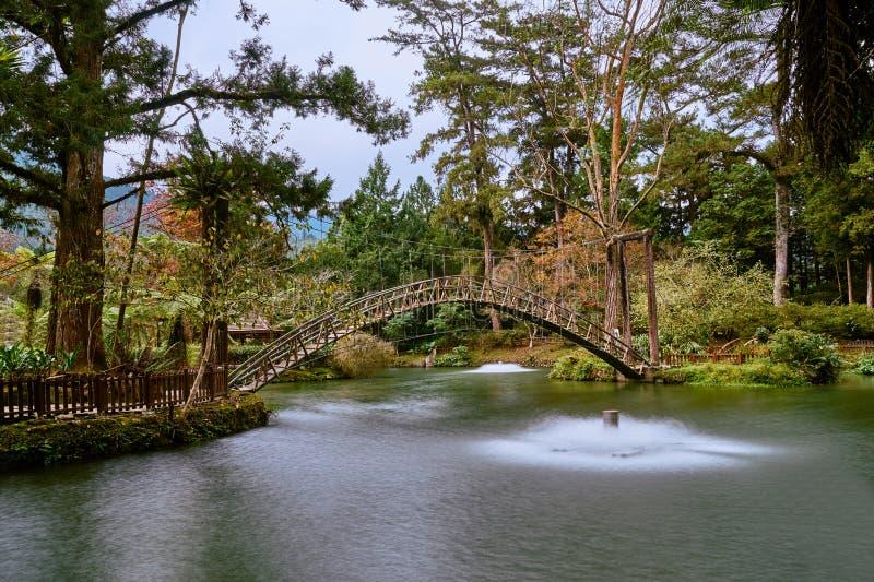 Beautiful wooden arch bridge scenics at University pond in Xitou Nature Education Area. At Nantou Lugu, Taiwan stock photos