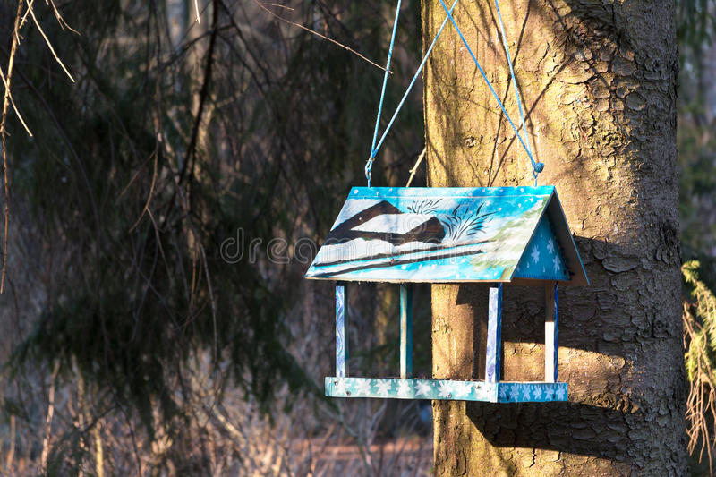 Beautiful wooden birdhouse feeder (nesting box) hanging on a tree in the park. Taking care of animals. Spring is coming royalty free stock image