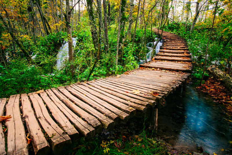 Beautiful wooden bridge pathway in the deep forest over a turquoise colored water creek in Plitvice, Croatia, UNESCO royalty free stock photos