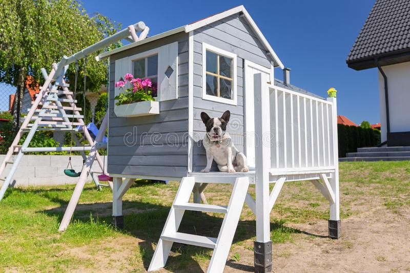 Beautiful wooden garden house for kids with the dog at the terrace stock photo
