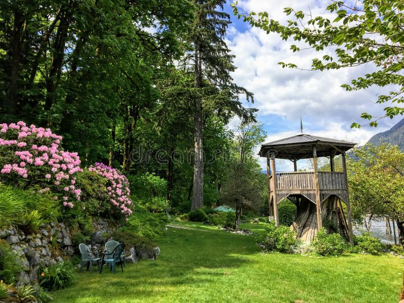 A beautiful wooden pagoda on top of a tree stump surrounded by pink flowers and tall evergreen trees in a remote forested area. Beside the ocean.  It is a stock photography