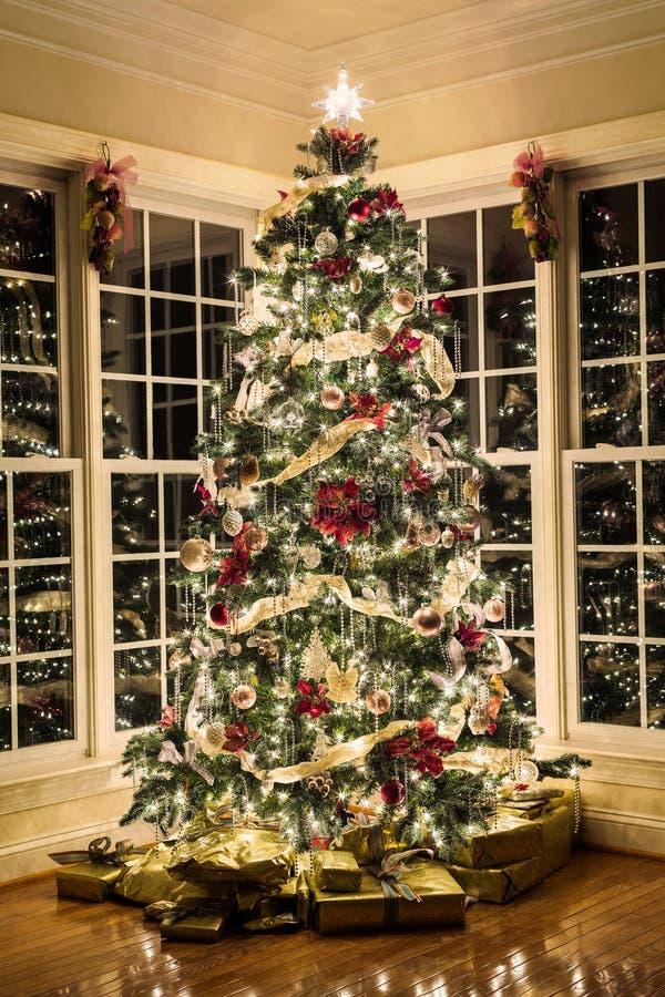 Beautiful xmas tree at night stock photo image