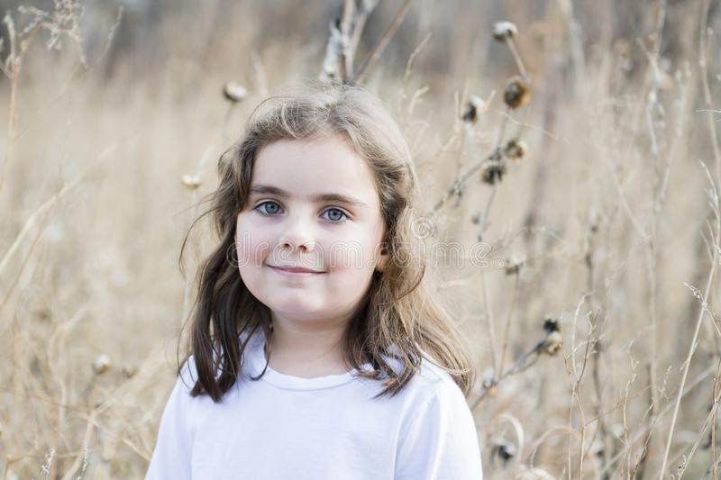 Beautiful 5-year Old Girl Outside on a Fall Day. With Dried Flowers and Sunlight royalty free stock photo
