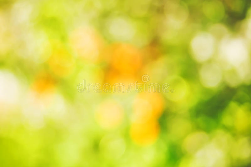 Beautiful yellow bokeh, spring background. Beautiful green bokeh. Spring background royalty free stock photo