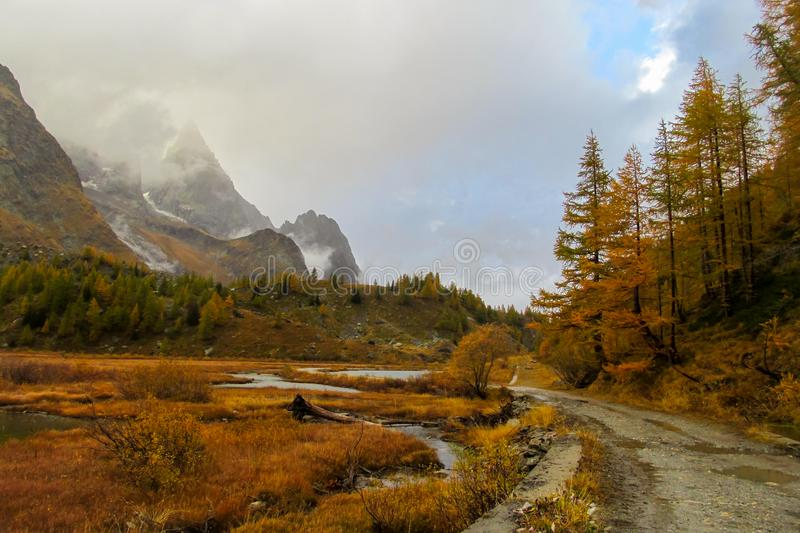 Beautiful yellow colors of autumn in the mountain valley at rainy day. Beautiful yellow colors of autumn in the mountain valley and forest. Tour du MontBlanc royalty free stock photography