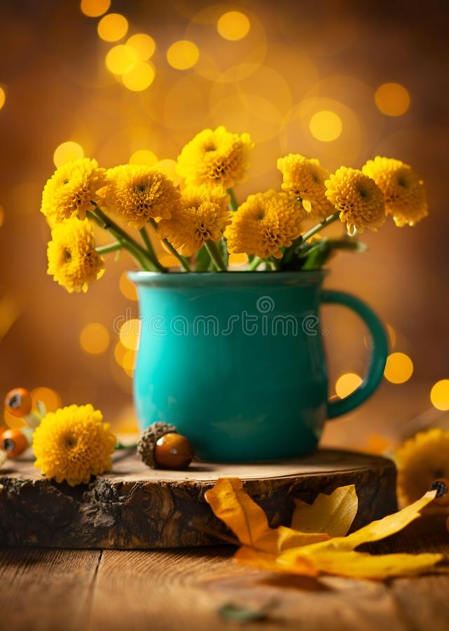 Beautiful yellow flower in blue cup on wooden table at bokeh  background. Front view. Autumn still life with chrysanthemum flower royalty free stock photos