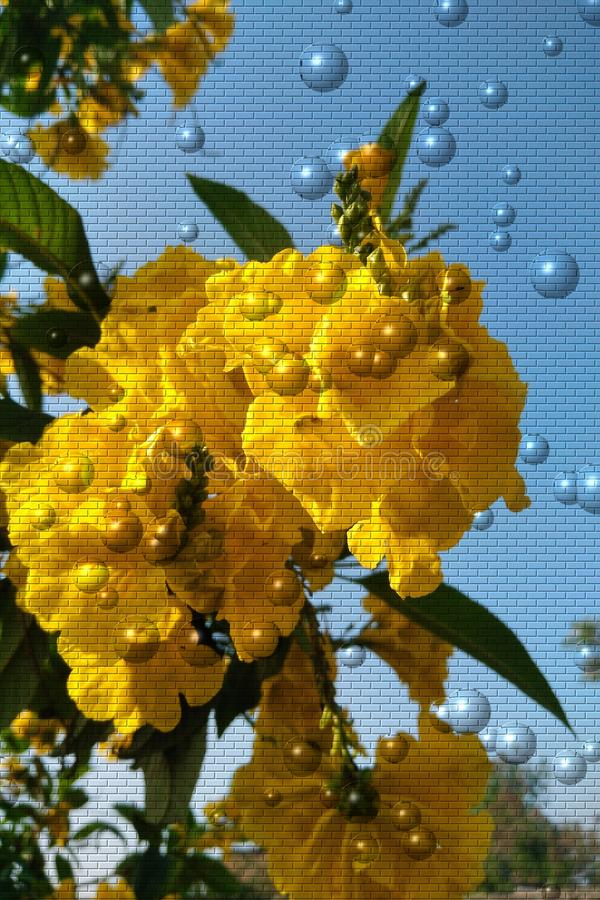 Beautiful yellow flower with brick well  and bubbles vector background stock photography