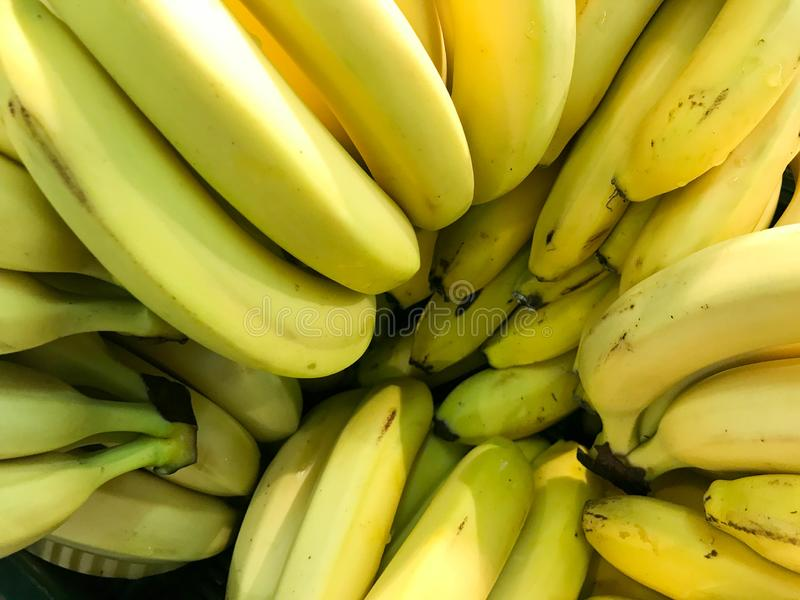 Beautiful yellow natural sweet tasty ripe soft round big bright bananas. Texture, background stock images