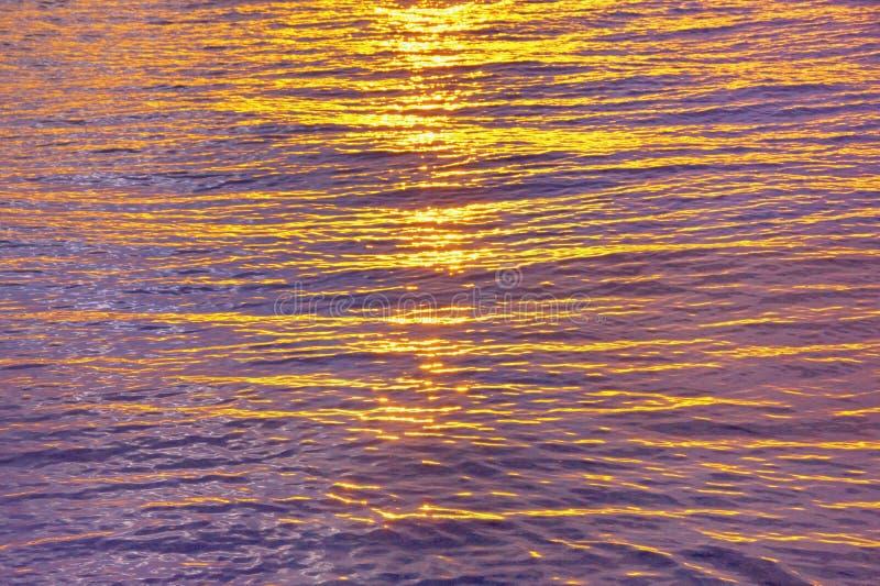 Beautiful yellow-purple background. Natural texture of sea water, illuminated by setting sun. Montenegro, Adriatic Sea royalty free stock image