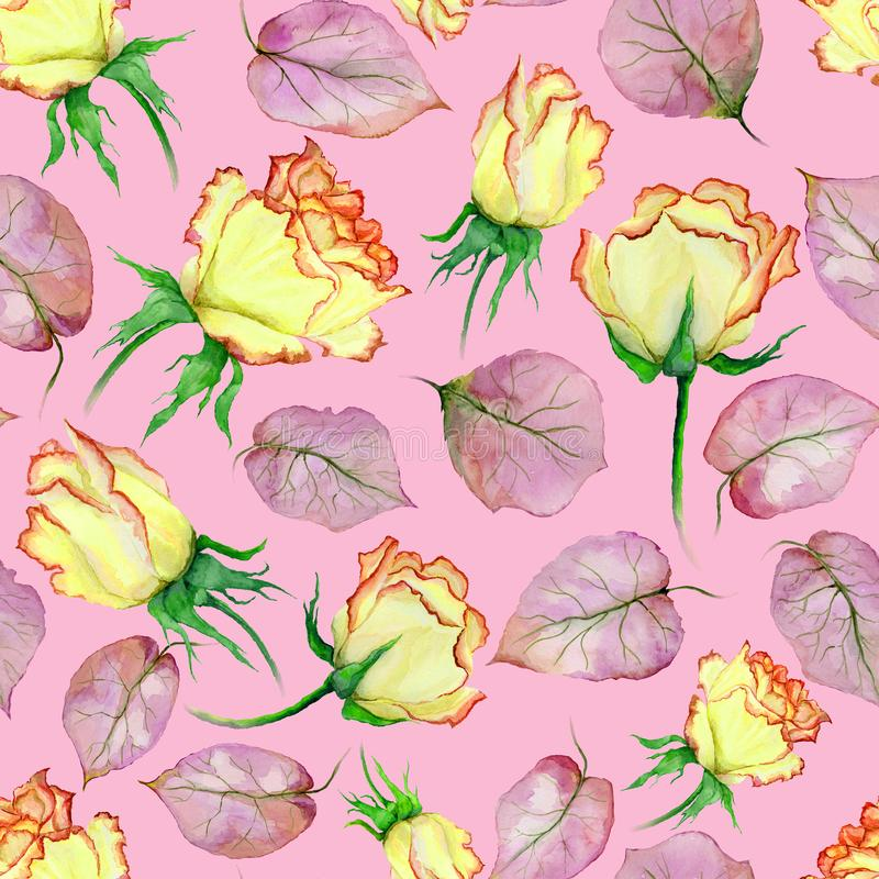 Beautiful yellow and red roses and leaves on pink background. Seamless floral pattern. Watercolor painting. Hand drawn and painted illustration. Fabric royalty free illustration