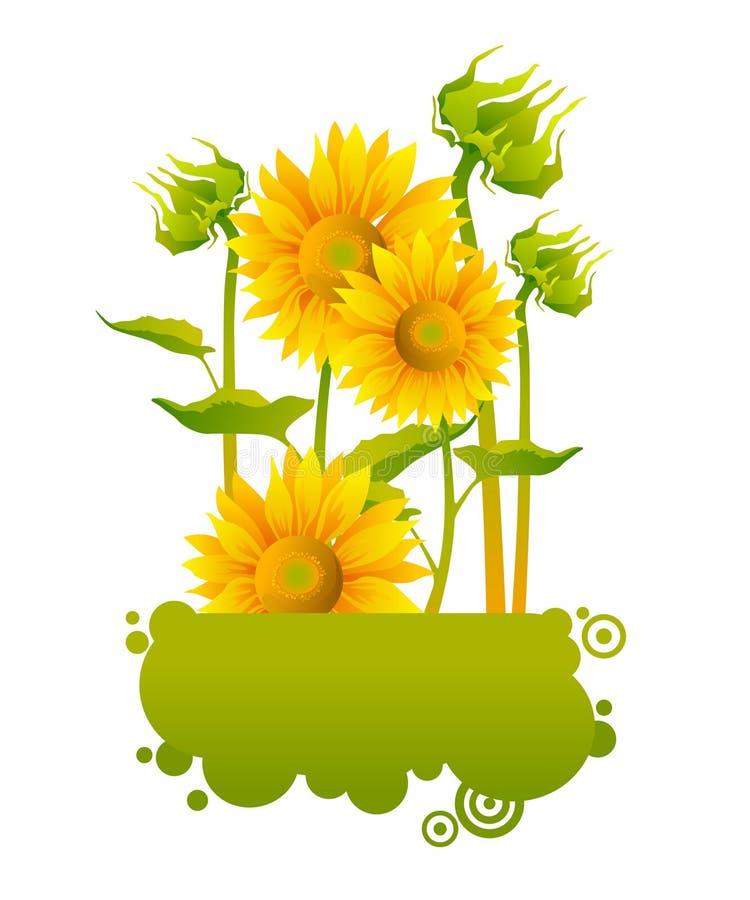 Download Beautiful Yellow Sunflowers Stock Vector - Image: 18283856