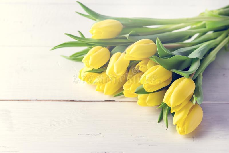 Beautiful Yellow Tulips on White Wooden Background Cop Space Beautiful Spring Flowers Toned royalty free stock photos