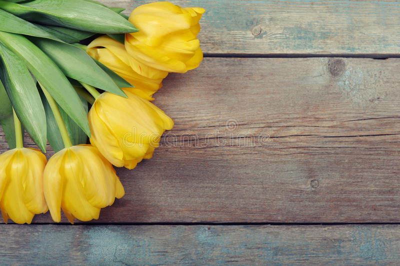 Download Beautiful yellow tulips stock image. Image of concept - 38876889