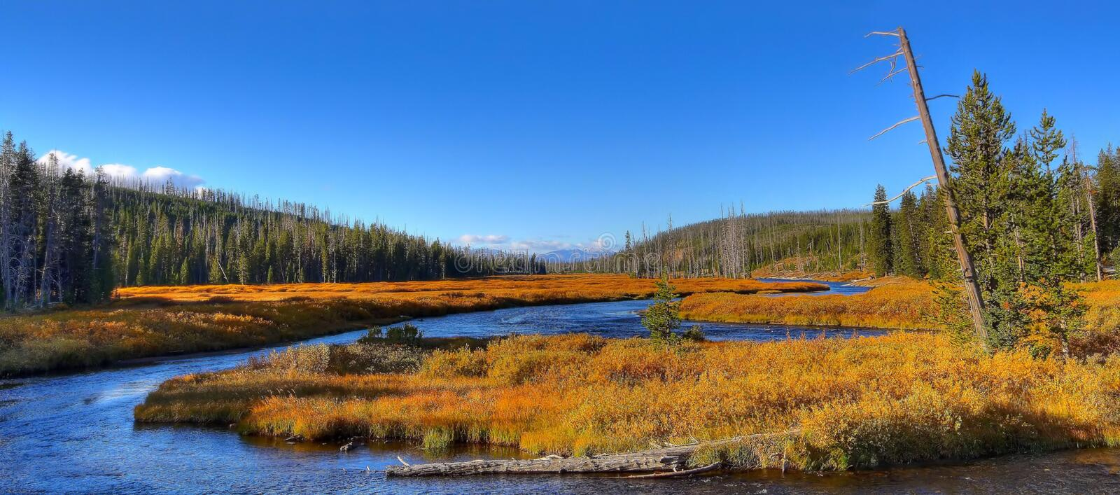 Winding Yellowstone River in Autumn royalty free stock photo