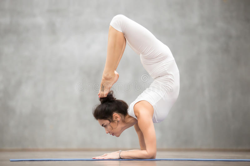 Beautiful Yoga: Scorpion pose. Side view portrait of beautiful slim young woman with tattoo on her foot meaning Wild kitty working out in fitness center, doing royalty free stock photography