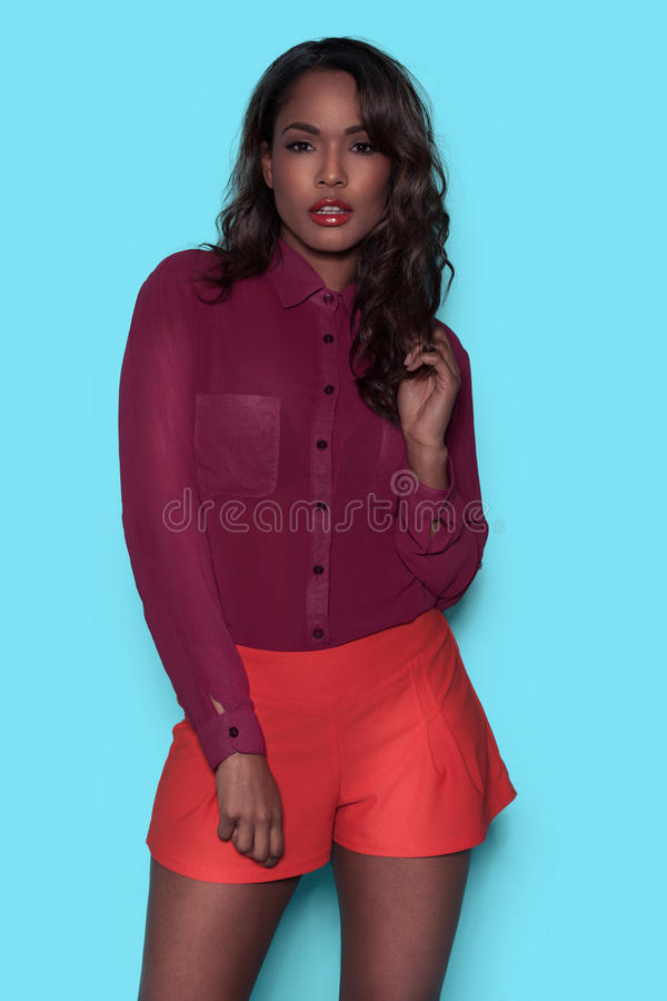 Beautiful young African American model stock image