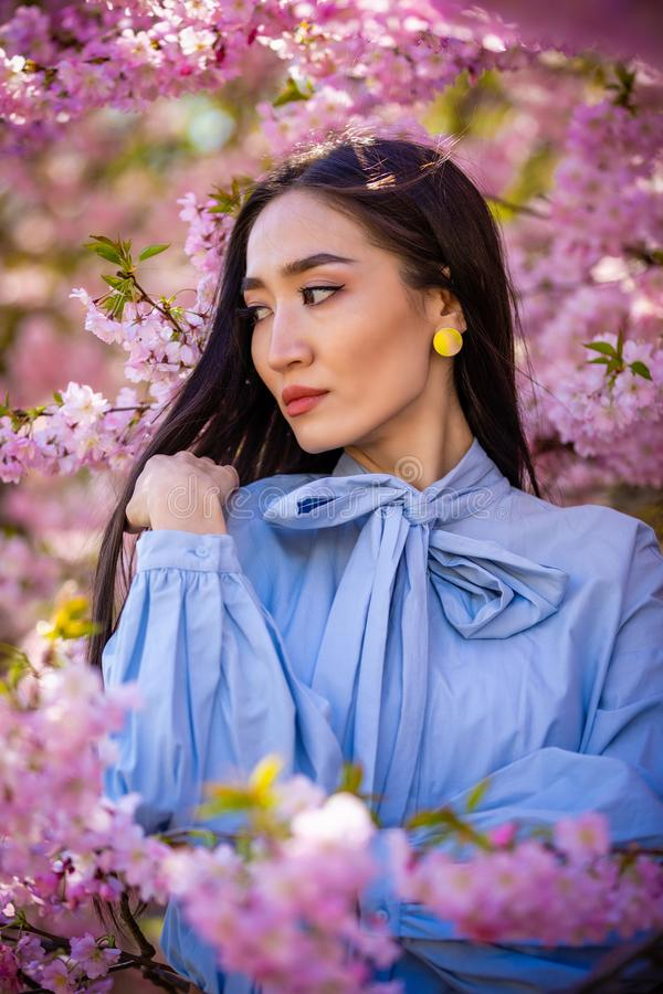 Beautiful young asian woman in blooming cherry blossoms garden. In Prague stock photos