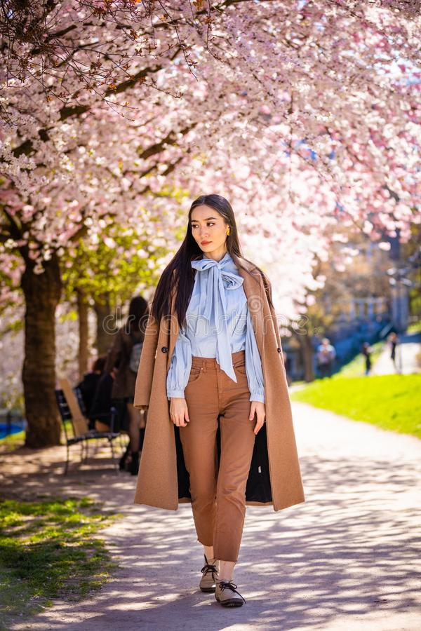Beautiful young asian woman in blooming cherry blossoms garden. In Prague royalty free stock image