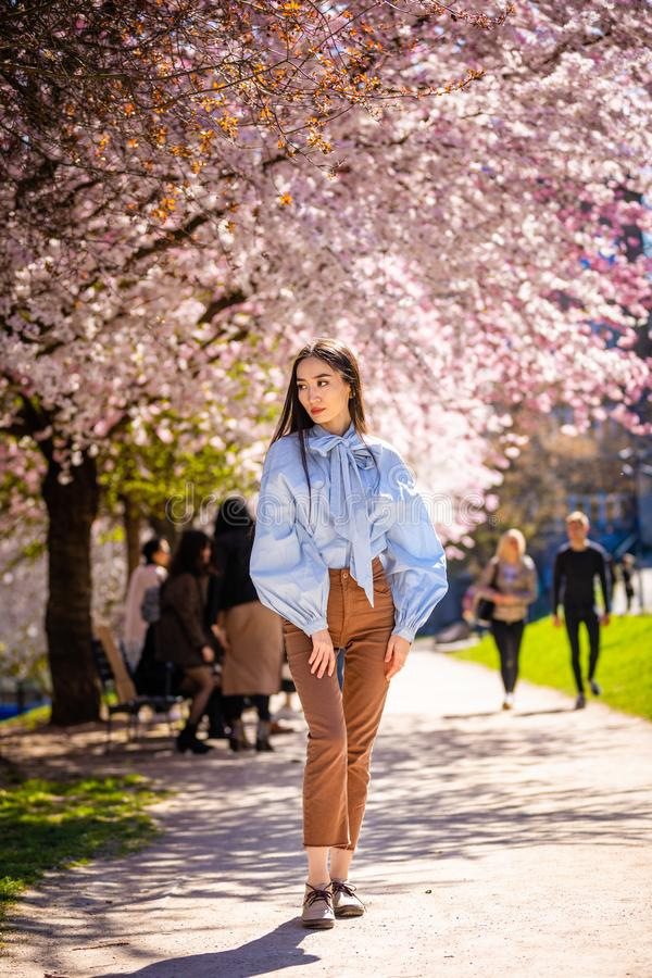 Beautiful young asian woman in blooming cherry blossoms garden. In Prague stock images