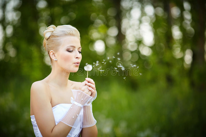 Beautiful young blonde bride royalty free stock photo