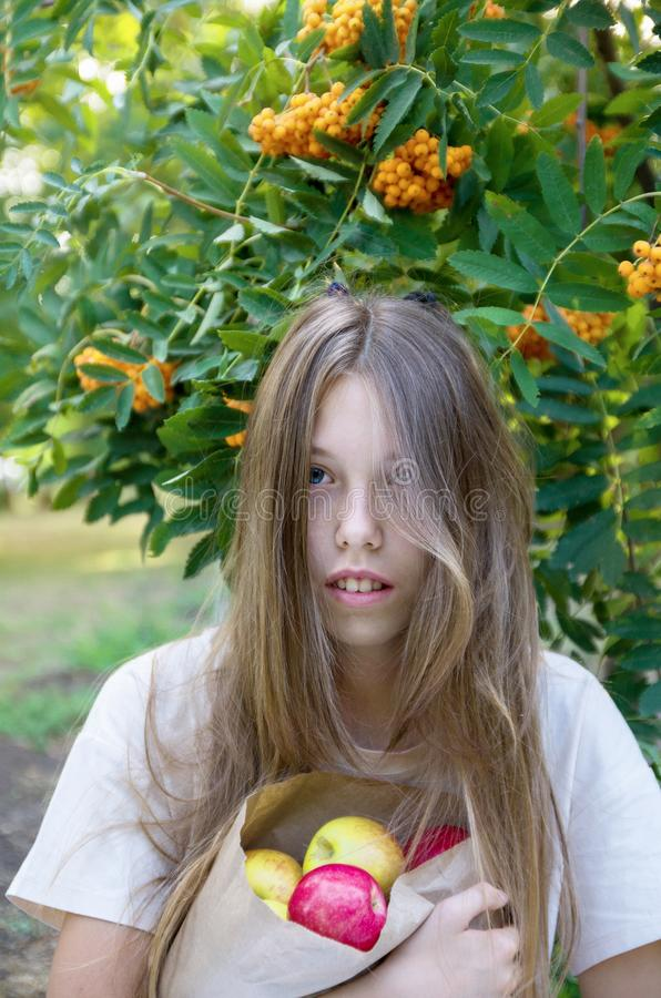 Beautiful girl with long blonde hair portrait. Bag of apples. The concept of autumn, the harvest, gardening. stock images