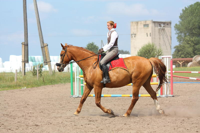 Beautiful young blonde woman riding chestnut horse. Beautiful young blonde woman riding trotting chestnut horse royalty free stock photos