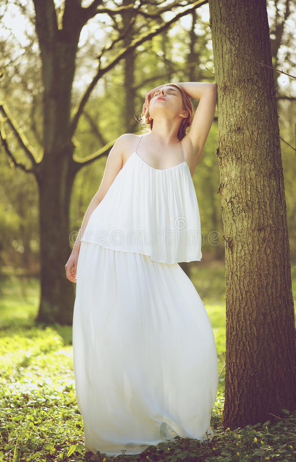 Beautiful Young Bride In White Wedding Dress Posing Against Tree Royalty Free Stock Photos