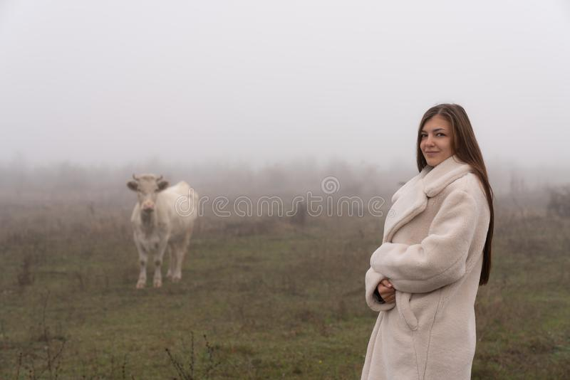 Beautiful young brunette girl in white coat stands among the meadow and looking at the camera, white cow on the. Background in fog looking at her, autumn time royalty free stock photography