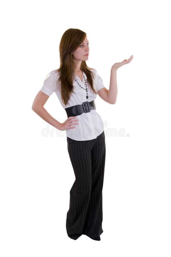 Download Beautiful Young Business Lady Stock Image - Image: 5156009