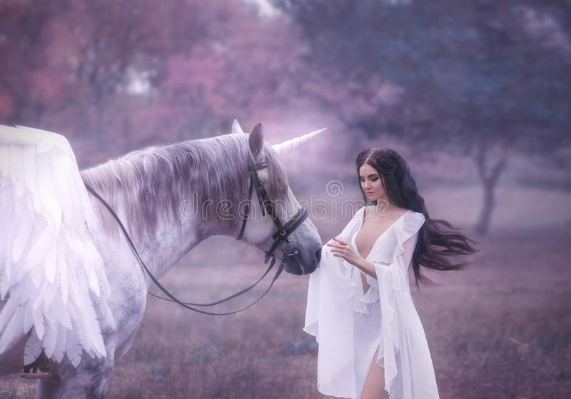 Beautiful, young elf, walking with a unicorn. She is wearing an incredible light, white dress. Art hotography royalty free stock photo