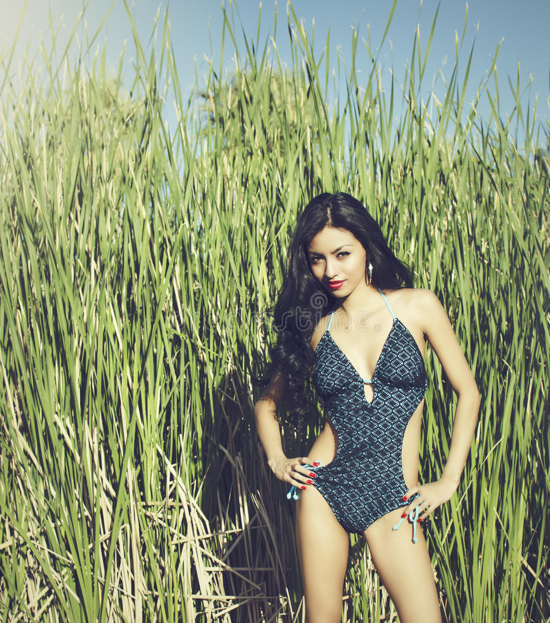 Beautiful young exotic woman in swimsuit stock image