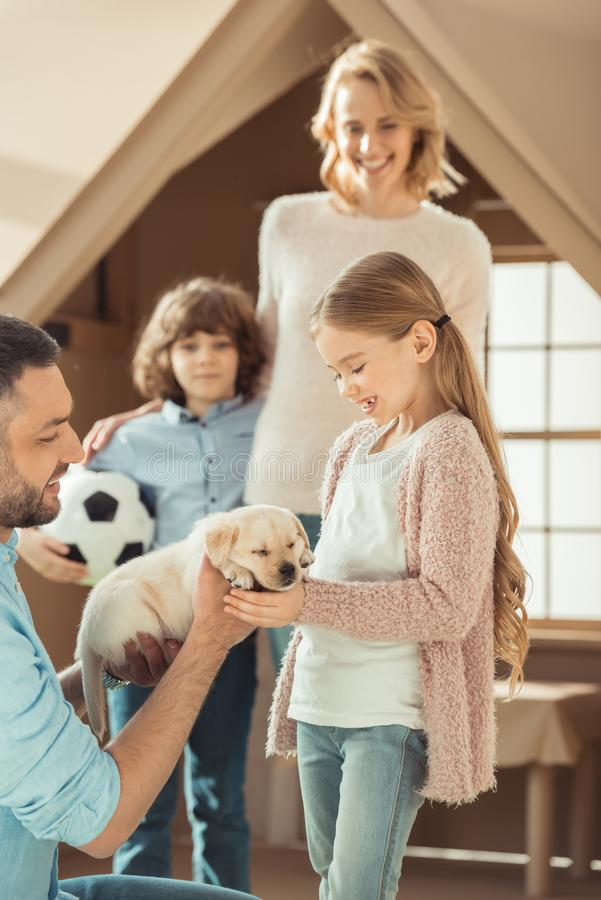 Beautiful young family with labrador puppy in front of. Cardboard house royalty free stock images