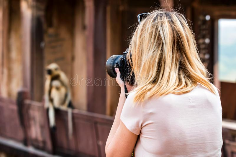 Beautiful girl takes picture of monkey in India stock photos