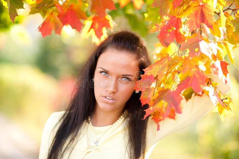 Beautiful Young Girl With Autumn Leaves Stock Photos
