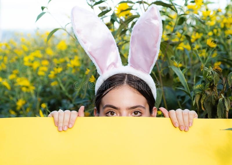 Beautiful young girl with bunny ears holding poster at yellow flowers nature background. Bunny girl holding yellow stock photo