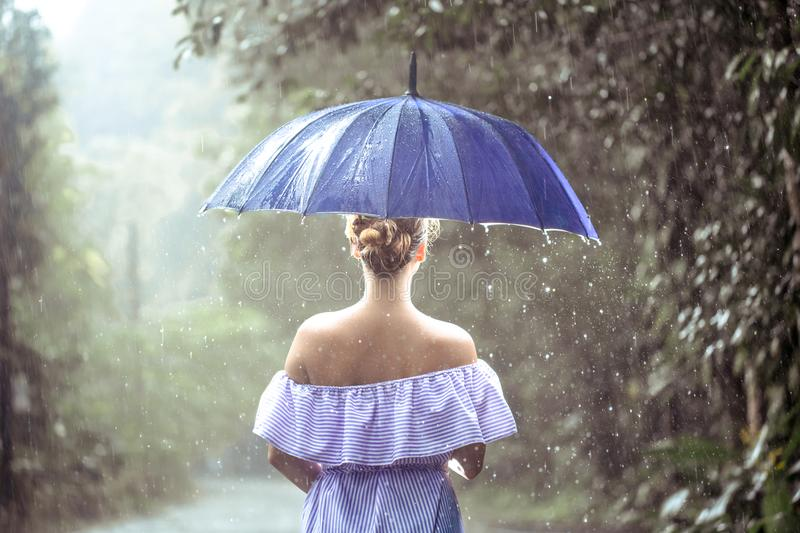 Girl with umbrella under the rain. Beautiful young girl in dress with umbrella under the rain in the rain forest royalty free stock photos