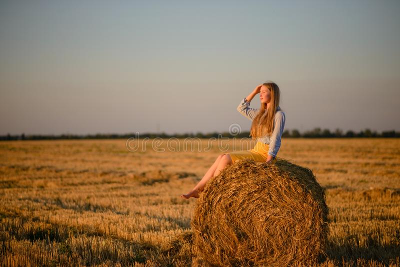 The beautiful young girl in the field about harvesting time royalty free stock image