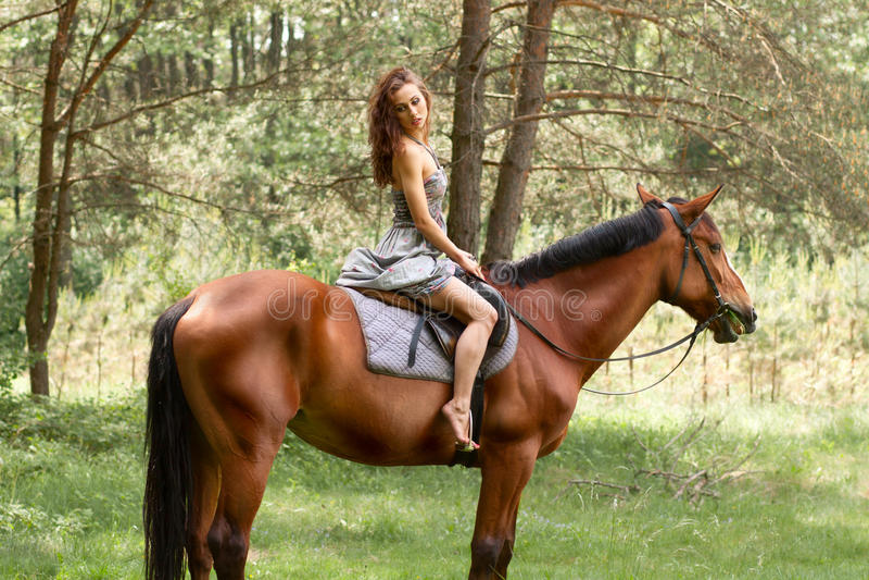 Beautiful young girl on horse stock photos