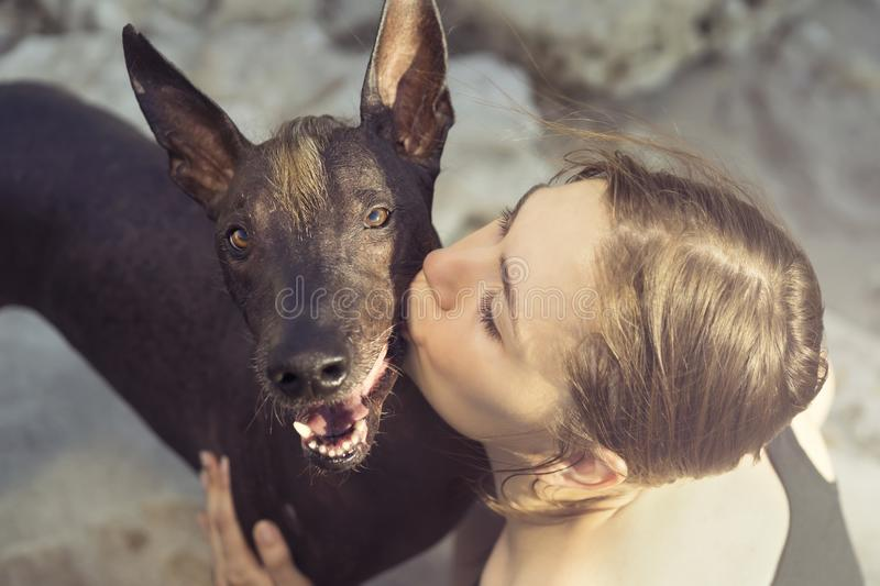 Beautiful young girl kissing her dog breed xoloitzcuintle, summer on a stony beach at sunset royalty free stock photography