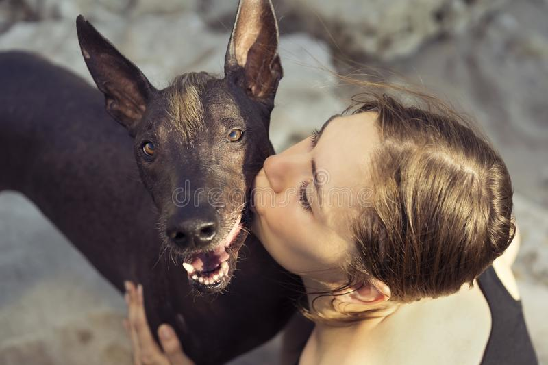 Beautiful young girl kissing her dog breed xoloitzcuintle, summer on a stony beach at sunset royalty free stock photos