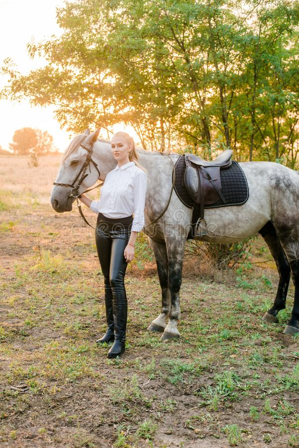 Beautiful young girl with light hair in uniform competition hugs her horse : outdoors portrait on sunny day on sunset. In autumn stock photography