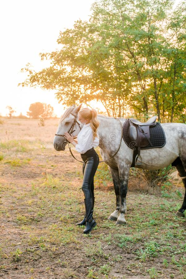 Beautiful young girl with light hair in uniform competition hugs her horse : outdoors portrait on sunny day on sunset. In autumn royalty free stock images