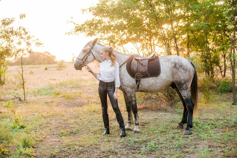 Beautiful young girl with light hair in uniform competition hugs her horse : outdoors portrait on sunny day on sunset. In autumn stock photos