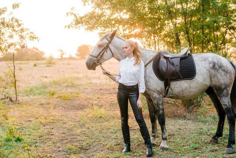 Beautiful young girl with light hair in uniform competition hugs her horse : outdoors portrait on sunny day on sunset. In autumn royalty free stock photography