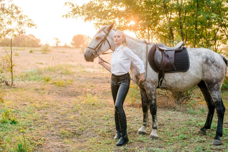 Beautiful young girl with light hair in uniform competition hugs her horse : outdoors portrait on sunny day on sunset. In autumn royalty free stock image