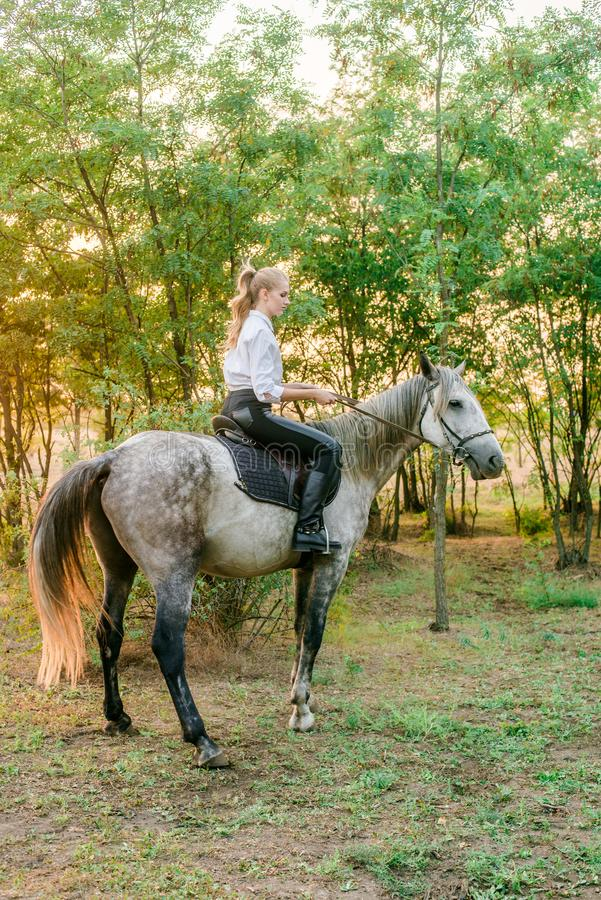 Beautiful young girl with light hair in uniform competition smiling and astride a horse in sunset royalty free stock image