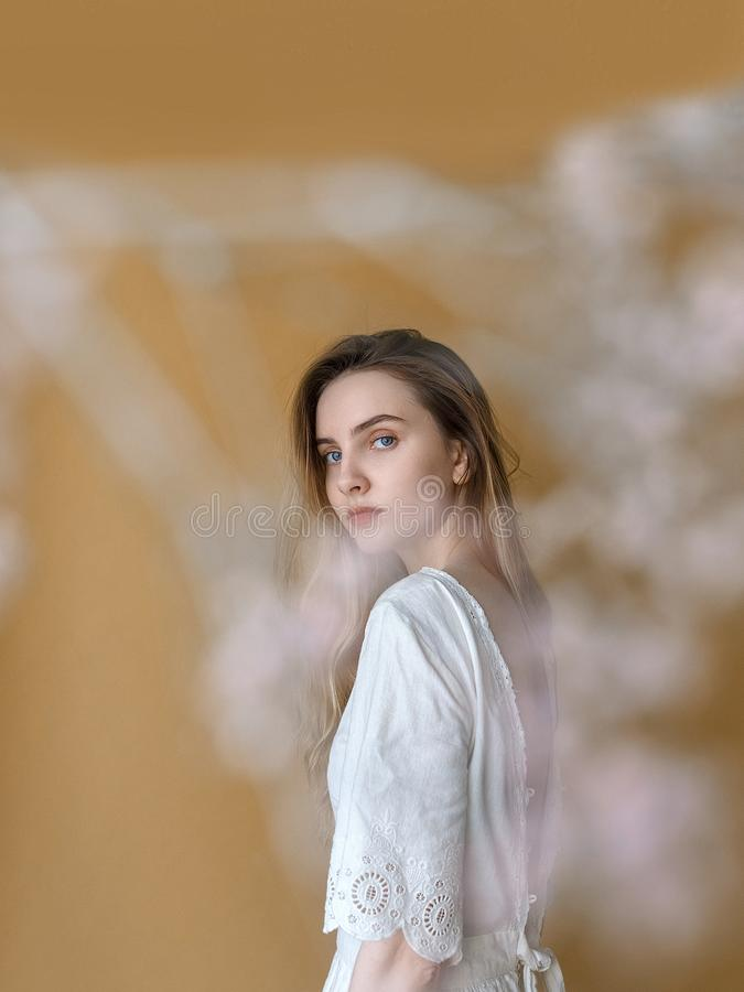 Beautiful young girl with long hair in white dress posing on beige background. White flowers on foreground out of focus royalty free stock photo